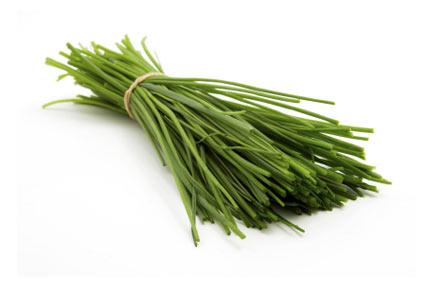erba-cipollina - colture - Fertilgest