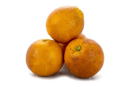 Arancio amaro - Coltivazione e fertilizzanti consigliati - Colture - Fertilgest