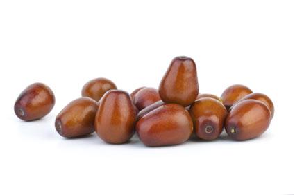 giuggiolo - colture - Fertilgest