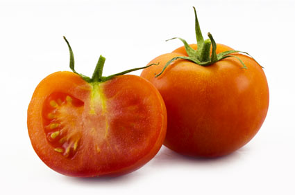 tomato - colture - Fertilgest
