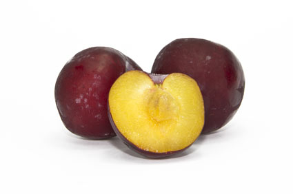 plum-tree - colture - Fertilgest