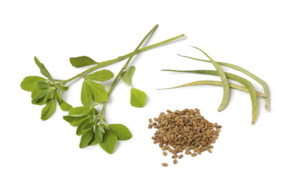 fieno-greco - colture - Fertilgest