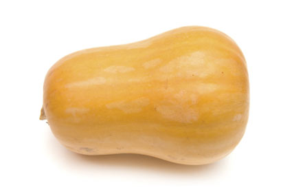 zucca - colture - Fertilgest