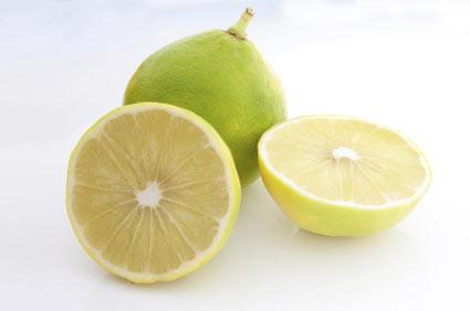 bergamot-orange-tree - colture - Fertilgest