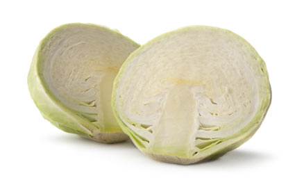 cavolo-bianco - colture - Fertilgest