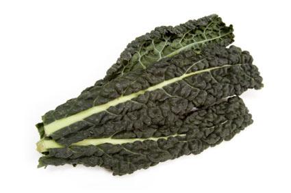 cavolo-nero - colture - Fertilgest